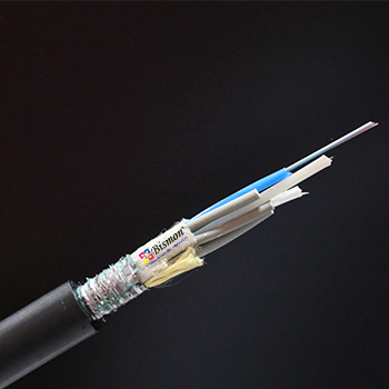 Duct Armoured Fiber optic cable (BISMON)