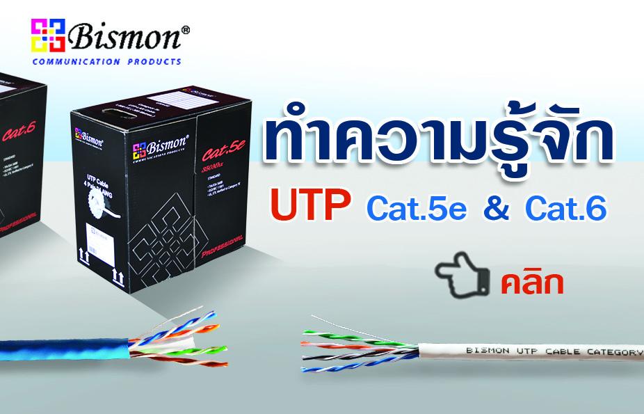 มาทำความรู้จัก กับสายแลน UTP Cat5 และ Cat.6